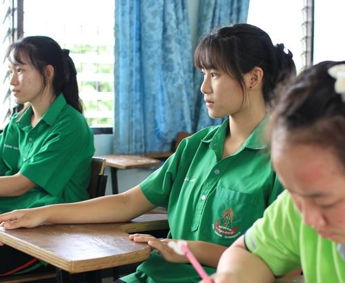 Volunteer Thailand Volunteer Bangkok Volunteer Projects