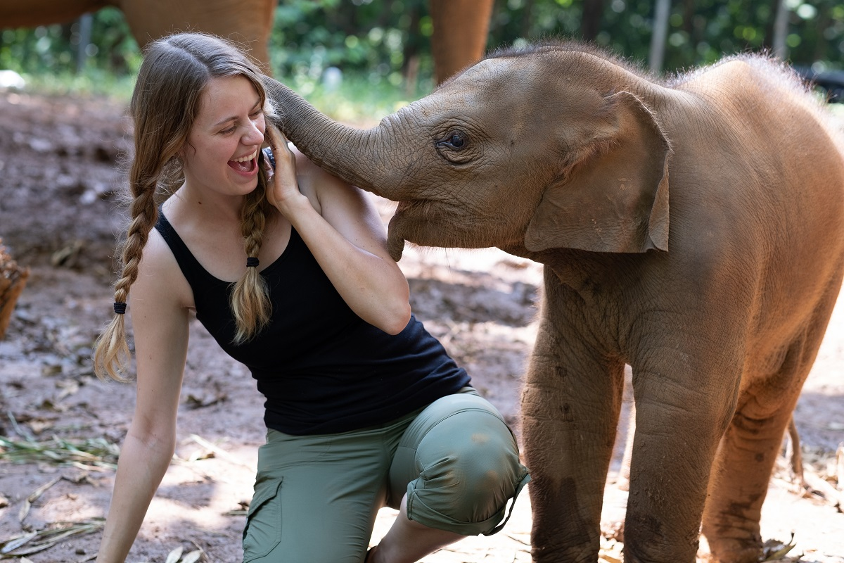 Elephant Camp | Volunteer Thailand | Friends for Asia